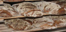 Panes, levaduras y harinas